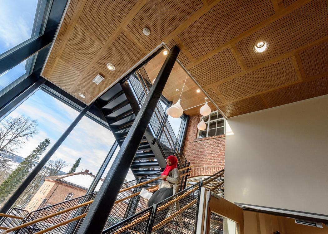 Edeltre himling i trappeløp, skole, Lillehammer